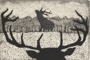 Tim Southall, The Rivals, Etching and aquatint