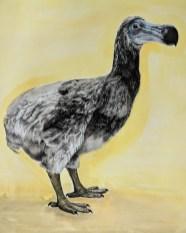 Tammy Mackay 'Dodo from Holland' polymer/watercolour £395