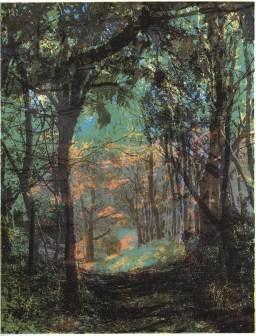 Glynis Porter 'An Evening Walk After Rain' screenprint £260