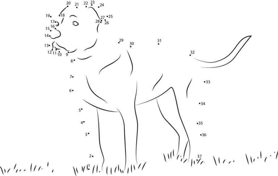 punkt zu punkt: hund zum ausdrucken, kostenlos, für kinder