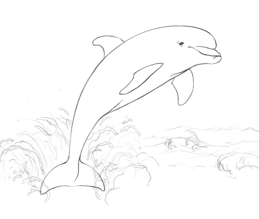 Ausmalbilder Ausmalbilder Delfine zum ausdrucken