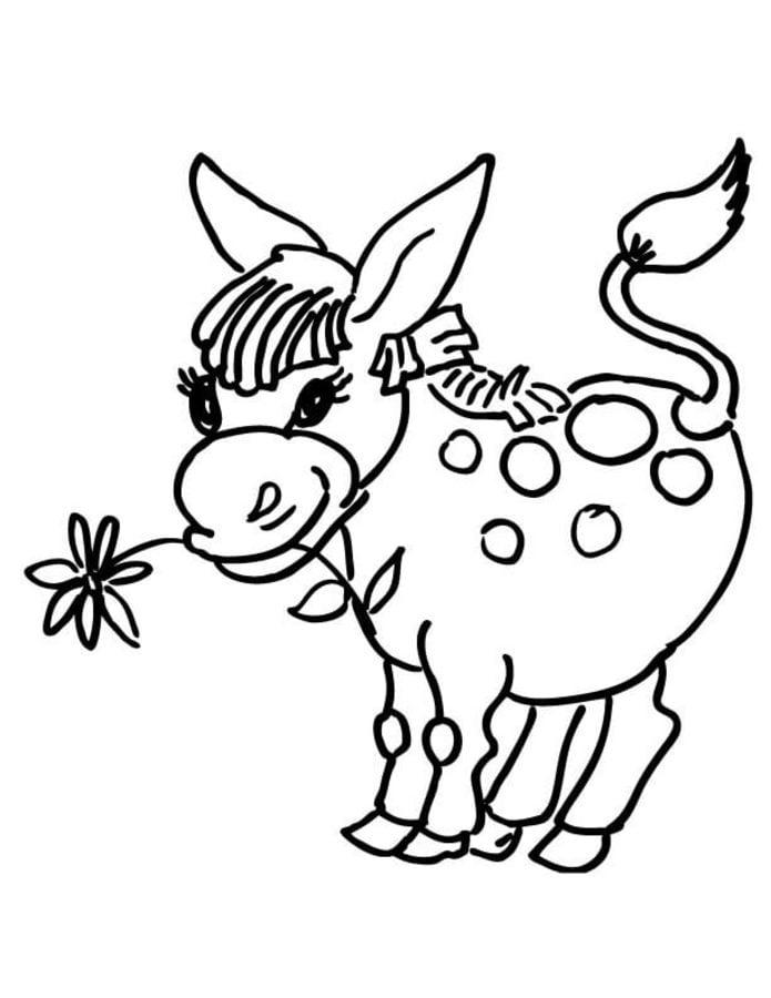 Ausmalbilder Esel zum ausdrucken kostenlos für Kinder