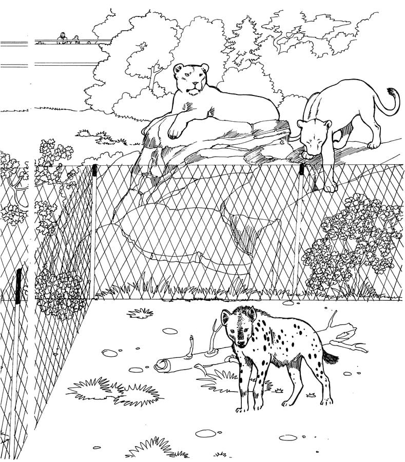 Coloring pages: Hyena, printable for kids & adults, free