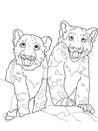Ausmalbilder Erwachsene Leopard Tatouage De Tte De Lopard