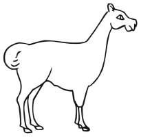 Ausmalbilder Ausmalbilder Lama zum ausdrucken, kostenlos ...