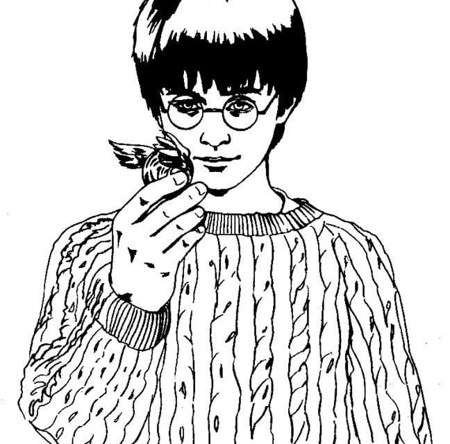 Kolorowanki: Harry Potter i Kamień Filozoficzny do druku