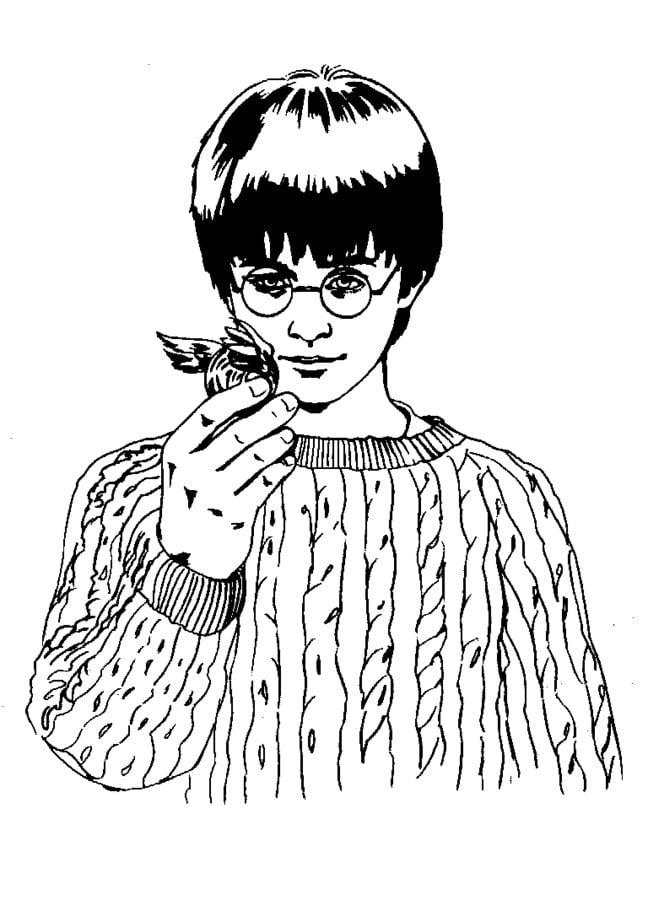 Dibujos Para Colorear Harry Potter Y La Piedra Filosofal Imprimible