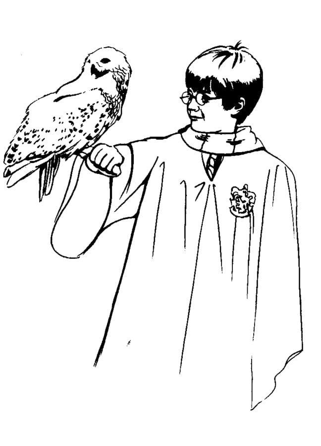 Ausmalbilder: Harry Potter und der Stein der Weisen zum