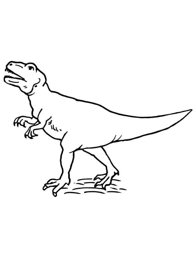 Dibujos para colorear: Allosaurus, lagarto extraño