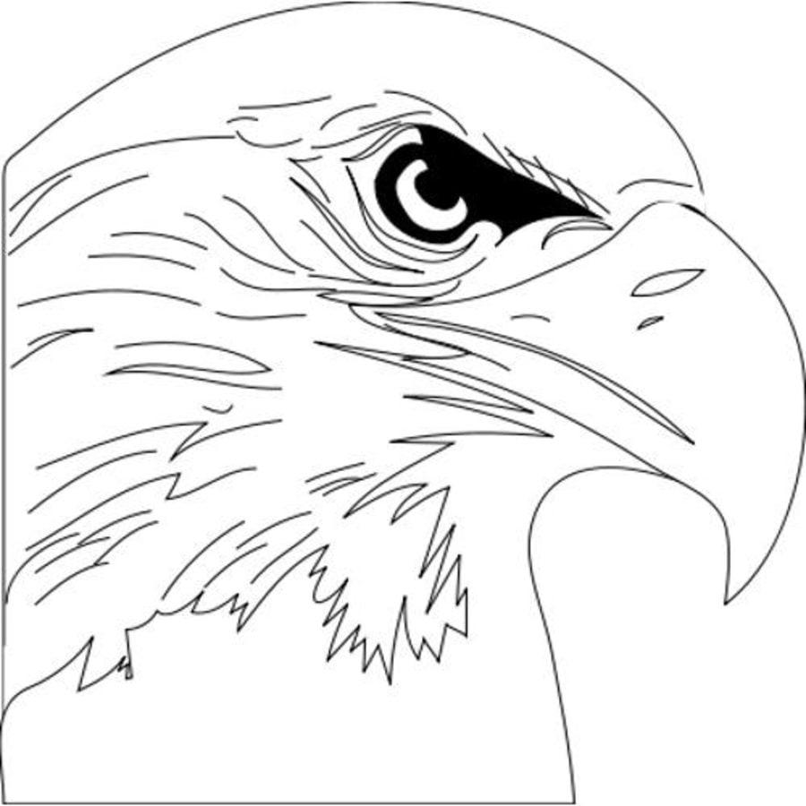 Ausmalbilder Ausmalbilder Fischadler zum ausdrucken