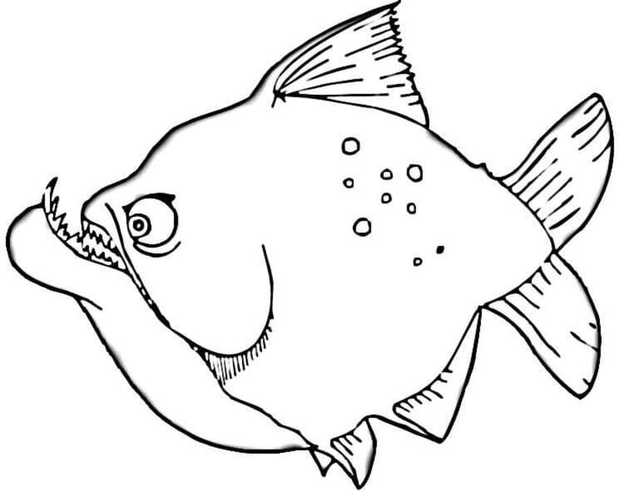 Ausmalbilder Ausmalbilder Piranhas zum ausdrucken