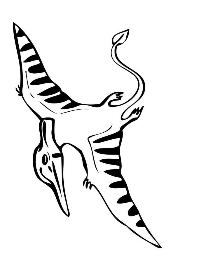 Kolorowanki: Pteranodon Dinozaury Kolorowanki Zwierzęta
