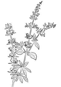 Ausmalbilder Pflanzen Blumen Pflanze In Kleinem Topf Ausmalbild