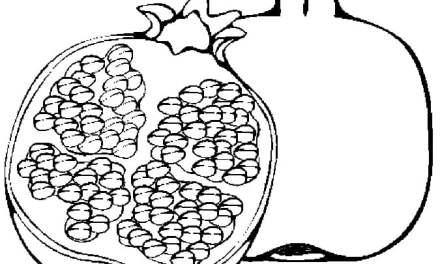 Ausmalbilder: Granatapfel