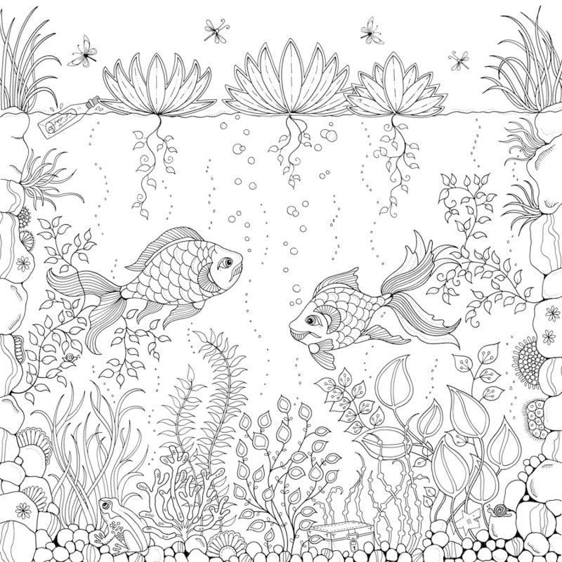 Coloriage Adulte Jardin Secret.Coloriages Pour Adultes Le Jardin Secret Imprimable