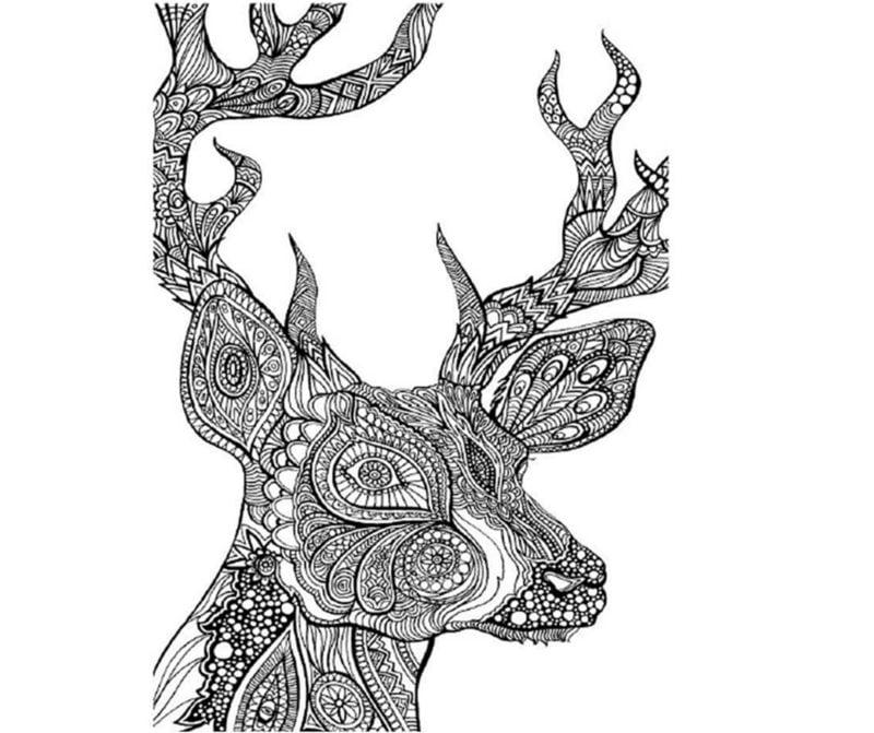 Ausmalbilder fr erwachsene Hirsch zum ausdrucken