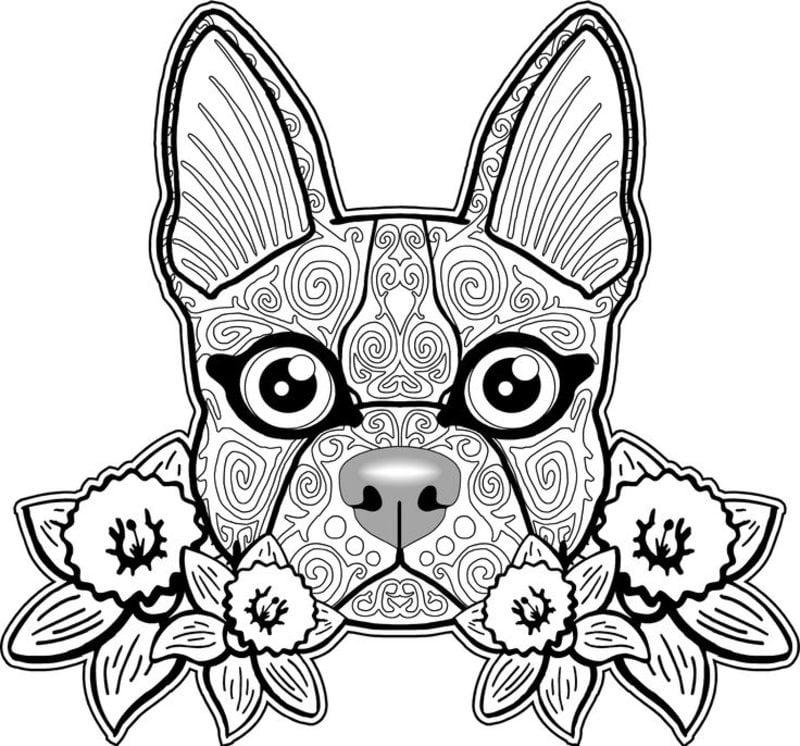 Ausmalbilder für erwachsene: Hunde zum ausdrucken ...