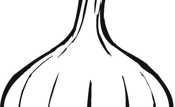 Ausmalbilder: Knoblauch