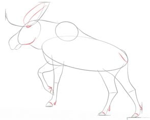 Elch Tiere Zeichnen Tutorials
