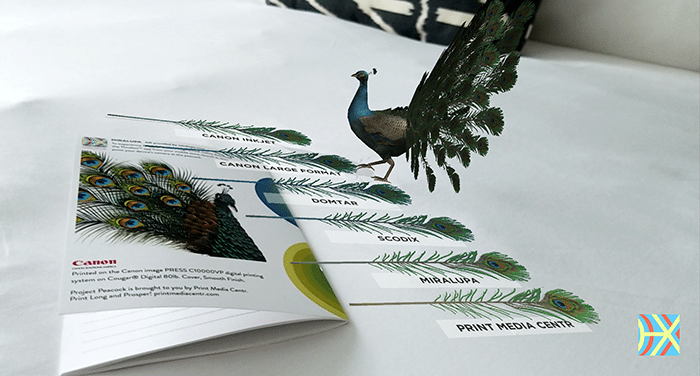 Tales From The Trail: #ProjectPeacock Saddles Up for Digital Print in Austin, Texas