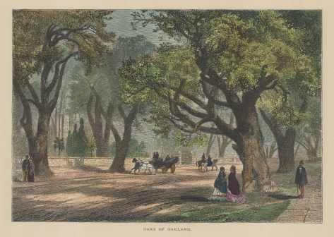 "Picturesque America: Oakland.1872. A hand coloured original antique wood engraving. 10"" x 7"". [USAp4840]"