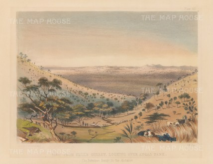 "Angas: Hall's Gulley, Angas Park 1846. An original colour antique lithograph. 9"" x 7"". [AUSp44]"