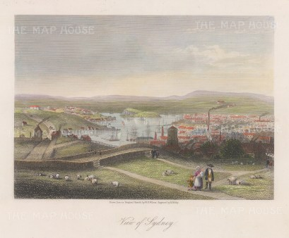 "Bibby: Sydney. c1860. A hand coloured original antique steel engraving. 8"" x 7"". [AUSp724]"