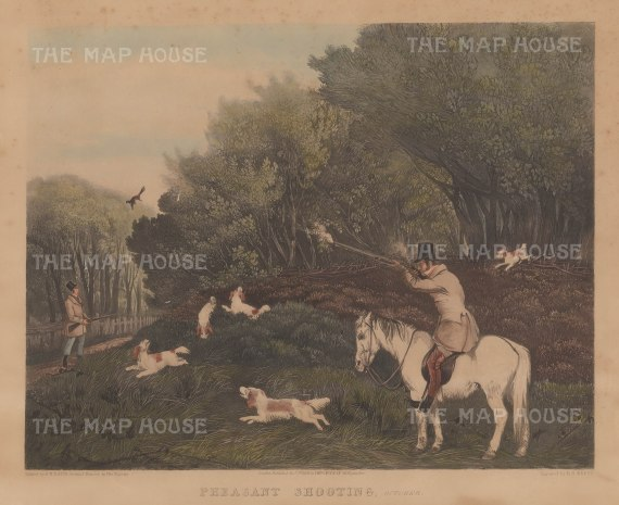 "McClean: Pheasant Shooting. 1836. An original colour antique aquatint. 20"" x 16"". [FIELDp1424]"