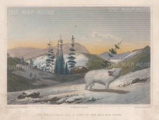 Dog Rib Rock: Franklin's Copper-mine Expedition 1819-22.