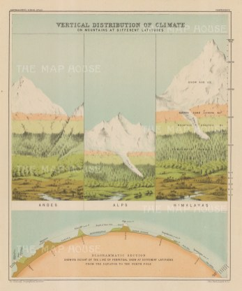 Vertical distribution of climate of different mountains, and snow at different altitudes.