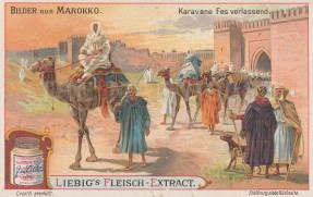 "Liebig's Extract: Fez, Morocco. c1900. An original antique chromolithograph. 4"" x 3"". [AFRp1242]"