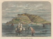 """Brown: Funchal, Madeira. c1885. A hand coloured original antique wood engraving. 5"""" x 3"""". [AFRp1363]"""