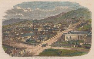 "Illustrated London News: Wellington. 1859. A hand coloured original antique wood engraving. 10"" x 6"". [NWZp282]"