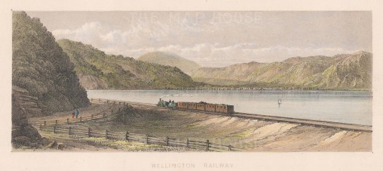 "Barraud: Wellington. 1877. An original antique chromolithograph. 8"" x 3"". [NWZp297]"