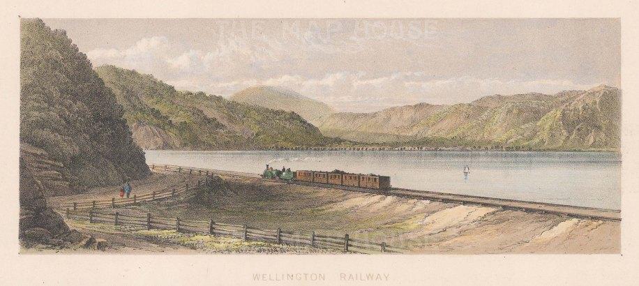 "Barraud: Wellington. 1877. An original antique chromolithograph. 8"" x 3"". [NWZp297]"