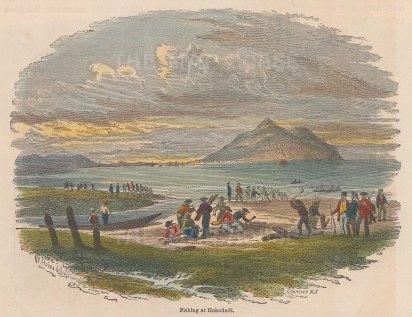 "Perry: Hakodadi. 1856. A hand coloured original antique wood engraving. 6"" x 5"". [SEASp1277]"