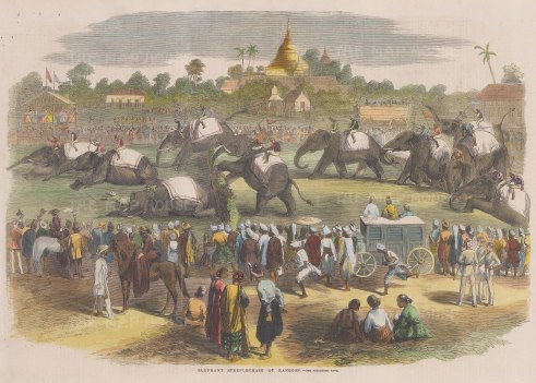 "Illustrated London News: Elephant steeplechase, Rangoon (Yangon). 1858. A hand coloured original antique wood engraving. 13"" x 9"". [SEASp1740]"