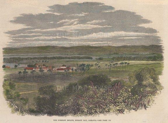 "Illustrated London News: Morant Bay, Jamaica. 1865. A hand coloured original antique wood engraving. 10"" x 8"". [WINDp999]"
