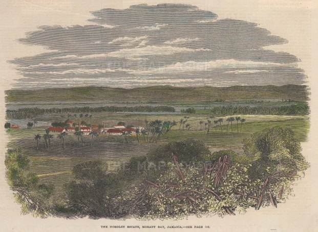 "Illustrated London News: Morant Bay, Jamaica. 1865. A hand coloured original antique wood engraving. 10"" x 8"". [WINDp999]"