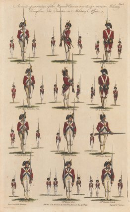 Twelve drills from Present Arms (24th) to Shoulder Firelock (35th).