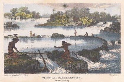 """Murray: Massaroony River, Guyana. 1835. A hand coloured original antique lithograph. 8"""" x 5"""". [SAMp951]"""