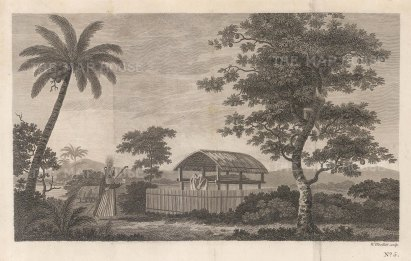 Matavai Bay: Priest by cremation hut. After Sydney Parkinson, artist of the First Voyage.