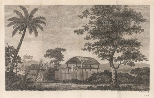 Matavai Bay. Priest by cremation hut. After Sydney Parkinson, artist of the First Voyage.