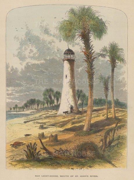 "Picturesque America: Jacksonville, Florida. 1880. A hand coloured original antique wood engraving. 6"" x 9"". [USAp4314]"