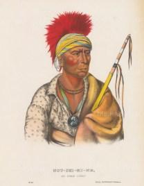 Not-Chi-Mi-Ne: An Ioway Chief.
