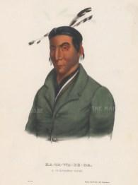 Ka-Ta-Wa-Be-Da: A Chippeway Chief.