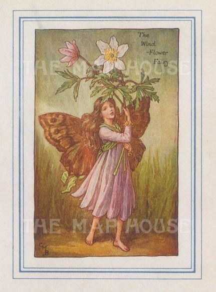 "Barker: Wild Flower Fairy. 1927. An original vintage chromolithograph. 3"" x 4"". [DECp2167]"