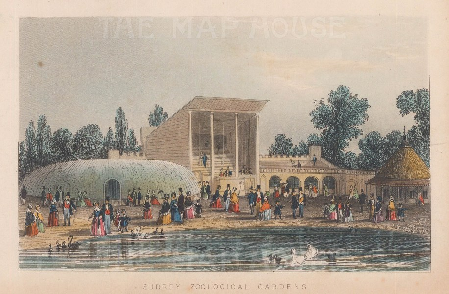 Vauxhall. 'Surrey' Zoological Pleasure Gardens. View of the band stand and part of the conservatory, the largest in England at this time.