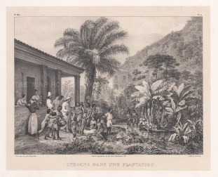 Indiens dans une Plantation: Provision of food on a coffee plantation.
