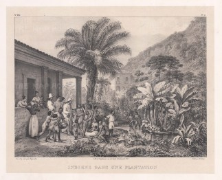 ‌Indiens dans une Plantation: Provision of food on a coffee plantation.